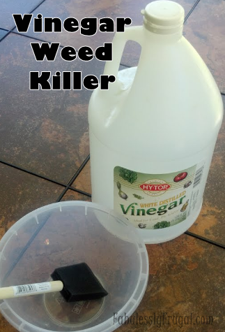 Got weeds easy homemade solutions to get rid of them fabulessly frugal - Get rid weeds using vinegar ...