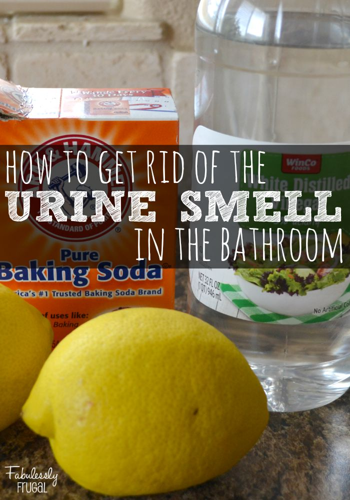 Beautiful How To Get Rid Of That Yucky Urine Smell In The Bathroom
